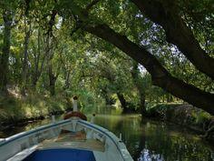 89 Riserva Naturale Fiume Ciane - Siracusa - Sicilia (foto di Pina Veroli)