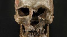 Un capítulo secreto de la historia: Los verdaderos europeos desaparecieron hace 14.500 años - RT