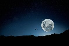 Full Moon - Photography by Rodrigo Pereira ( ROD )