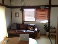 あえてカーペットなどを引かずに 畳の上にunicoのソファを置いてこの通り。