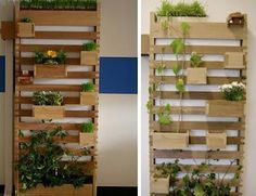 indoor vertical garden apartment - Google Search