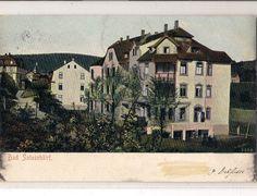 Haus Wieseneck 1910