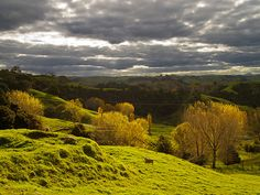 Auttumnal Landscape by nick_daniel_s, via Flickr