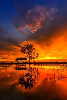 ~~Sunset   Jitra, Kedah, Malaysia   by rizalis ismail~~