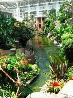Opryland Hotel in Nashville, TN. Such an awesome place!! We would go here for date nights occasionally since it wasn't too far down the road from our apartment.  Makes me a little nostalgic for Nashville.