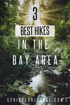 Here are the top 3 hikes in the Bay Area that you HAVE to check out! Have you hiked at any of these trails before? Complete the 52 Challenge Hike this year and change your life. Hiking In Texas, Colorado Hiking, Hiking With Kids, Camping And Hiking, Visit California, California Travel, Hiking Places, Hiking Spots, Castle Rock State Park