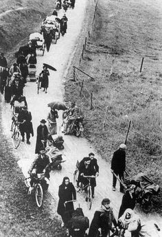 French fleeing south to escape the German offensive - 1940. Roger-Viollet