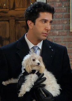 Remember the dog was the best man? Cute Dog from Friends (Ross Geller David Schwimmer) by That Long Hair Girl Friends Cast, Friends Moments, Friends Series, Friends Show, Friends Forever, Ross Friends, Friends Actors, Friends Phoebe, David Schwimmer