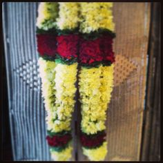 Traditional wedding hindu garlands.(yellow carnation w/greenery & red carnation, 55 in length)Cost-$65 each Yellow Carnations, Red Carnation, Traditional Indian Wedding, Garland Wedding, Greenery, Garlands, Wedding Dresses, Inspiration, Wreaths