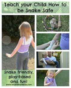 """Teach your child to be Snake Safe"" Wildlife Fun 4 Kids. The best article I've ever read on teaching children snake safety - without fear. ""I believe it's important to respect snakes. Fostering fear doesn't help a child, but education does. It's possible to appreciate each animal for their role within the environment and educate your child about the risks associated with that animal at the same time and have fun doing it too!"" Originally Pinned by Alec Duncan of http://childsplaymusic.com.au"