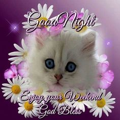 Good night sister and all.have a peaceful sleep,God bless xxx❤❤❤✨✨✨🌙 Good Night Sister, Cute Good Night, Good Night Sweet Dreams, Good Night Messages, Good Night Quotes, Bon Weekend, Happy Weekend, Good Afternoon, Good Morning