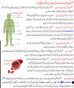 How to Diagnose Diabetes >>> Details can be found by clicking on the image.