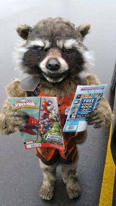 Here's How That Incredible Rocket Raccoon Halloween Costume Was Made
