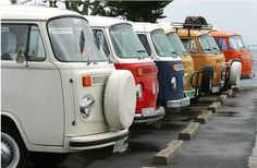 Nothing I love more than a line up of Kombi's