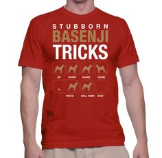Dogs Stubborn Basenji Tricks #stubborndogtricks #teachdogtocome
