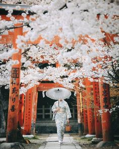 Destination Japon, Bullet Journal Travel, Torii Gate, Japan Picture, Samurai Tattoo, Anime Japan, Hello Spring, People Of The World, Outdoor Photography