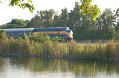 6 Amazing Florida Day Trips You Can Take By Train