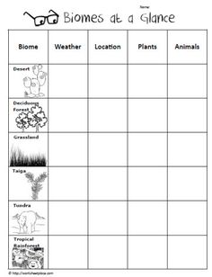 Biome Graphic Organizer  for the reflection process??? when gallery walking & learning about other's biomes?