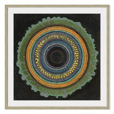 Gallery Direct Radial Pattern I by Stella Alesi Framed Graphic Art Size: