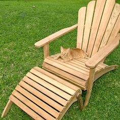 Charming And Unique Teak Adirondack Chairs For Outdoor Or Patio Furniture Ideas: Charming And Unique Teak Adirondack Chairs For Outdoor Furniture Ideas