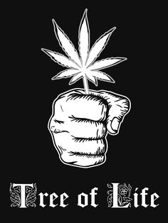 'Tree of Life' T-Shirt by Samuel Sheats Marijuana Art, Marijuana Plants, Medical Cannabis, Dragon's Teeth, Weed Art, Psy Art, Puff And Pass, Smoking Weed, Gras