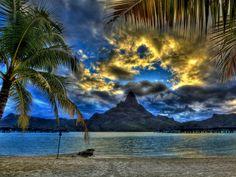 imágenes de mar, playa, fondos de pantalla superior vectoriales, fotos palmeras, ramas, fondos, imágenes de la montaña de arena
