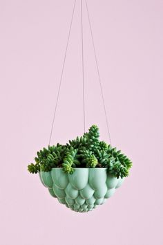 Not sure what to do with that old jelly-mould you brought with you? Recycle it into a hanging pot!