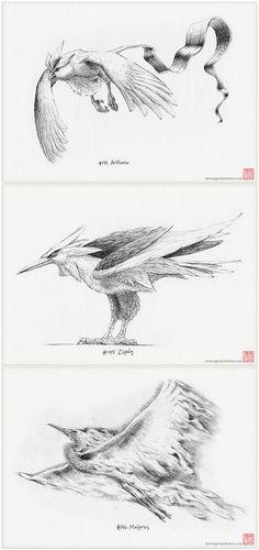Legendary bird trio Pokémon set of three A4 by DrawingsofHeroes, $44.00