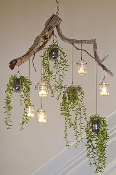 indoor hanging plants ideas to decorate your home 4 ~ mantulgan.me indoor hanging plants ideas to decorate your home 4 ~ mantulgan.