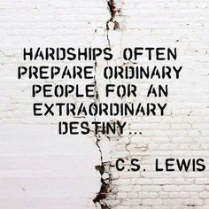 Hardships are necessary for growth, they help us become who we were born to be.