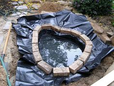 How to Build a Fish Pond or Garden Pond : 6 Steps (with Pictures) - Instructables Fish Pond Gardens, Ponds For Small Gardens, Small Ponds, Water Gardens, Small Fish Pond, Big Leaf Plants, Ponds Backyard, Backyard Waterfalls, Pond Landscaping