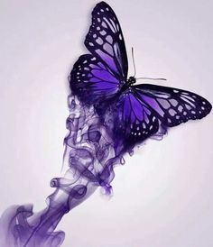 Purple Butterfly ...