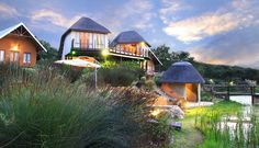 Addo dung beetle guest Star Lodge accommodation in Addo Elephant Park Secure online payment! Elephant Park, Thatched Roof, Open Fires, Rock Pools, Africa Travel, Jacuzzi, Travel With Kids, Beetle, Cottages