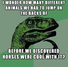 Philosoraptor Meme – Riding Horses
