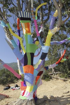 Love Yarn Bomb trees!