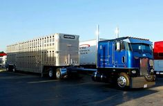 Peterbilt Cabover Fans added a new photo. Big Rig Trucks, Semi Trucks, Cool Trucks, Custom Big Rigs, Custom Trucks, Freightliner Trucks, Peterbilt 379, Cab Over, Jeep Truck