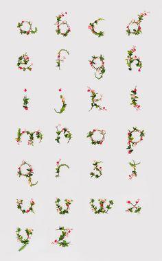 photographic alphabet of flowers!