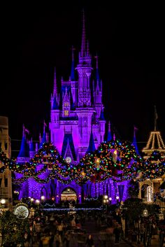 Disney at Christmas time! I get to see that soon!!!!