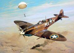 1943 05 06 добавив соль на рану - Рой Гриннелл (Спитфайер МК IX в.)  Во главе с командиром 307-м эскадрильи истребителей, генерал Джордж LaBresche, четыре Спитфайеров курсировали на 10 000 метрах к югу от Туниса, Алжира от 6 мая 1943 года. В нескольких ярдах от его правое крыло, 1-й...