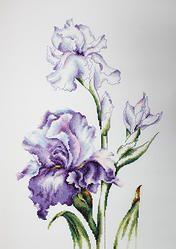 B2251 Irises €18.00  Kit completo de punto de cruz Marca: Luca-S Hilos: Anchor Tela Aida: Zweigart Medidas: 24*38cm Colores: 34