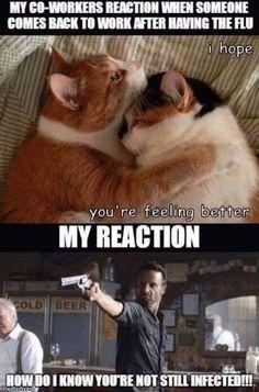 The Walking Dead / flu season funny meme