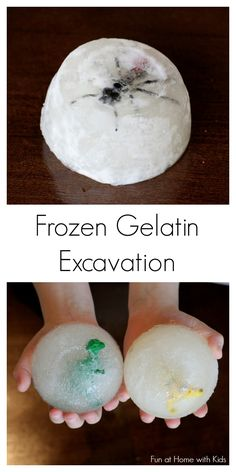 So fun. Frozen Gelatin Fossil Excavation - a twist on the classic ice excavation - it's freezing cold, a fun sensory experience, and safe for babies and toddlers! Sensory Activities, Sensory Play, Preschool Activities, Sensory Bins, Dinosaur Activities, Dinosaur Crafts, Sensory Table, Preschool Curriculum, Winter Activities