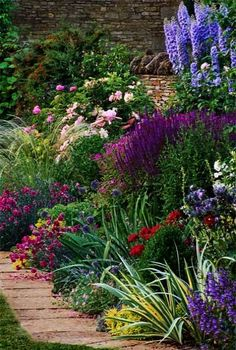 beautiful mix of perennial flowers bloom in a wide range of blue white yellow red and purple colors against a brown stone wall