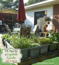 Do you have a small back yard, but want want a big vegetable garden?  No problem at all! See my 11 tips for growing a vegetable garden on a deck.  #ad #GilmourGardens #GilmourGardening