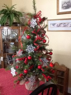 Red berry, snowflake tree