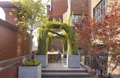 Potted Plant Ideas to Elevate Your Outdoor Space Photos   Architectural Digest