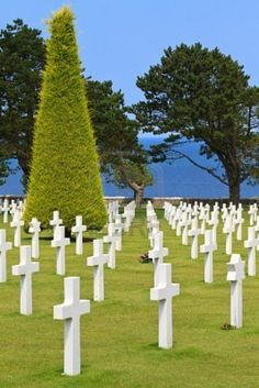 American War Cemetery near Omaha Beach, Normandy (Colleville-sur-Mer) http://www.123rf.com/photo_11085615_american-war-cemetery-near-omaha-beach-normandy-colleville-sur-mer.html                                                                                                                                                     More