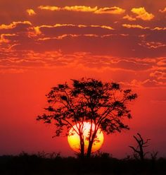 39 Best Sunsets In Africa Images On Pinterest