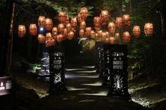 Parc de la Gorge de Coaticook | Foresta Lumina