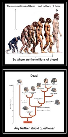 """I think they meant """"where are the millions of skeletal remains of these? Science Vs Religion, Anti Religion, Christian Memes, Free Thinker, Science Facts, Always Learning, Truth Hurts, The Millions, Science Education"""